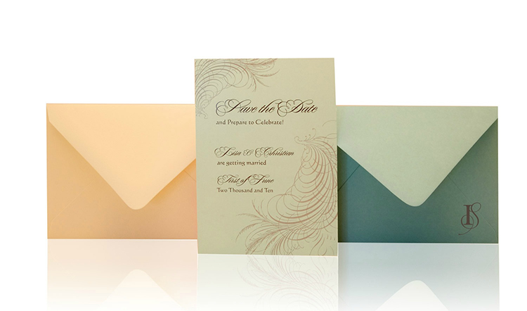 Dreamy Feather Save the Date Invitation